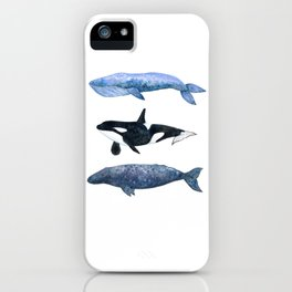 Watercolor Whale Pod iPhone Case