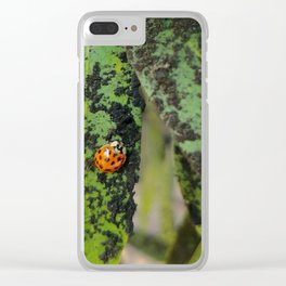 Speckles on Speckles Clear iPhone Case