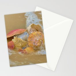 A collection Sea Shells by the Seashore with Sea Foam Stationery Cards
