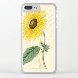 Edwards, S.(1768-1819) - Edwards' Botanical Register - Heianthus Clear iPhone Case
