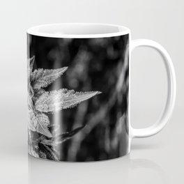 Haze Berry Coffee Mug