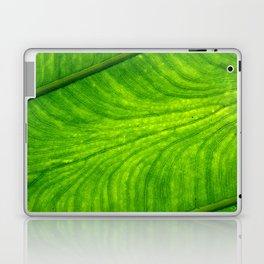 Leaf Paths Laptop & iPad Skin