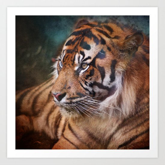 The mysterious eye of the tiger Art Print