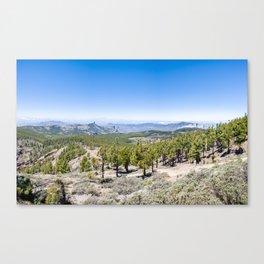 Pico de las Nieves Canvas Print