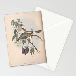 Yellow-throated Miner, myzantha flavigula3 Stationery Cards