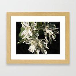 Green and White Flowers Framed Art Print