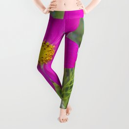 Flowers Go Wild in Wimbledon 5 - Cosmos the bold Leggings