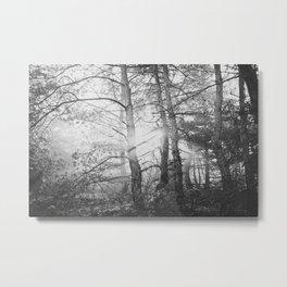 in the wood Metal Print