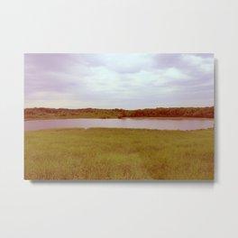Pondside. Metal Print