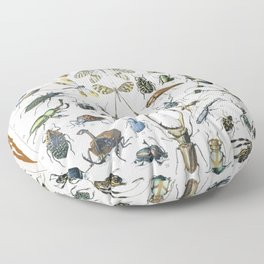 Adolphe Millot- Vintage Insect Print Floor Pillow