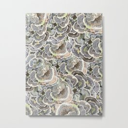 Forest Floor: Turkey Tail Fungi Metal Print