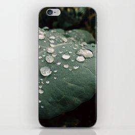 Dewdrops 4 iPhone Skin
