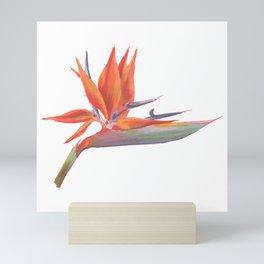 Bird of Paradise Flower Mini Art Print