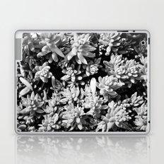 Succulent circle Laptop & iPad Skin