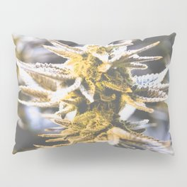 Beautiful Flower Pillow Sham