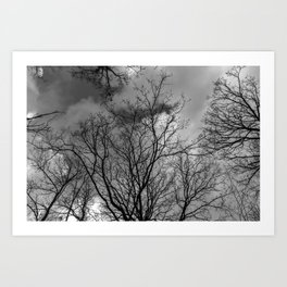 Trees and clouds, black and white Art Print