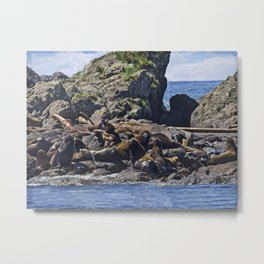 West Coast Art - Bathing Beauties Metal Print