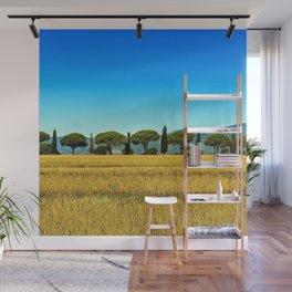 Cypress Trees along the road, Tuscany, Italy Wall Mural