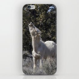 Happy Traveler with Mom and Pallaton iPhone Skin