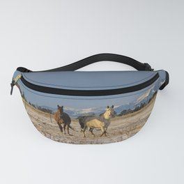 Come on Ponies Fanny Pack