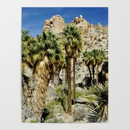Thousand Palms Poster