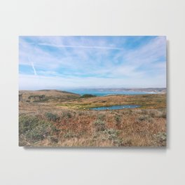Point Reyes Elk Metal Print