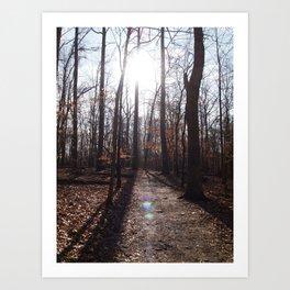 Fall trail Art Print