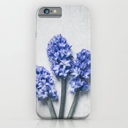 Three Blue Hyacinths iPhone Case
