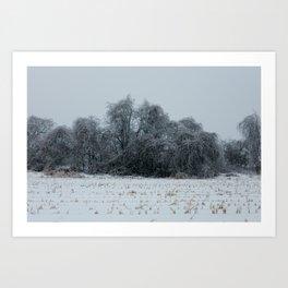 2013 Ice Storm 3 Art Print