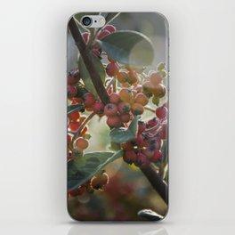 Soft Light on Winterberry Shrub iPhone Skin