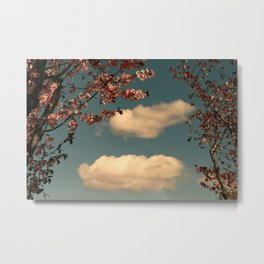 The Sky and the Cherry Trees Metal Print