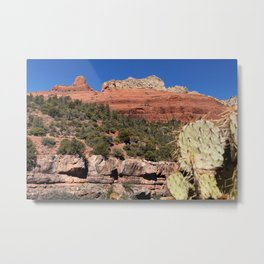 The Face of the Desert Metal Print