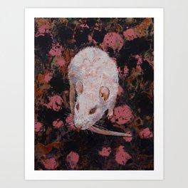 White Rat Art Print