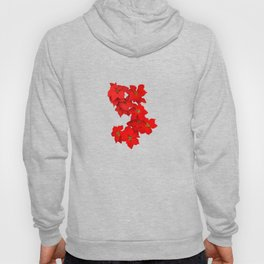 Red Flowers Blossom Hoody