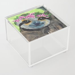 Flower Crown Sloth Acrylic Box