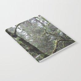 Shinrin-yoku Notebook