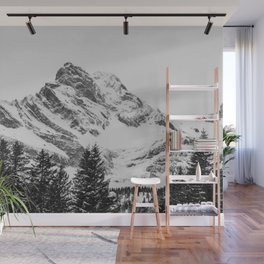 black and white like forest and snow Wall Mural