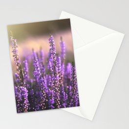 Magical Purple Flowers | Nature Photography | Floral Fine Art Print in Europe | Sunset in Landsape Stationery Cards