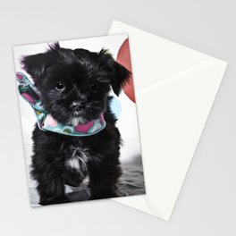 Black and White Mixed Breed Puppy Wearing a Valentine's Day Hearts Scarf Stationery Cards