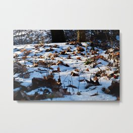 Grunewald Berlin, Germany Metal Print