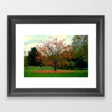 Beautiful Trees (2) Framed Art Print