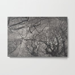 Labyrinth of Branches Metal Print