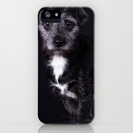 Pop the Dog iPhone Case