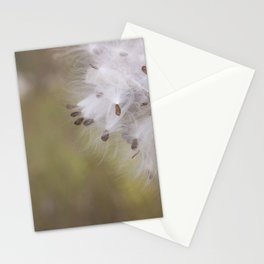 Milkweed Pod Stationery Cards