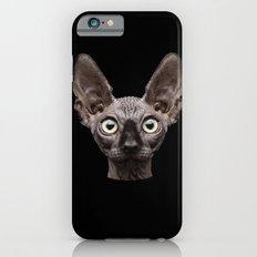 Funny Cat iPhone 6s Slim Case