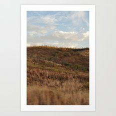 Pilanesberg 03 Art Print