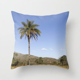 'Cerrado' Landscapes in 'Serra da Canastra' National Park Throw Pillow