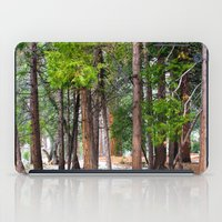 forrest iPad Cases featuring Forrest by Savannah Ault