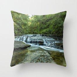 Ledge Falls, No. 2 Throw Pillow