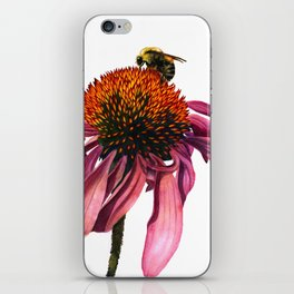 Coneflower iPhone Skin
